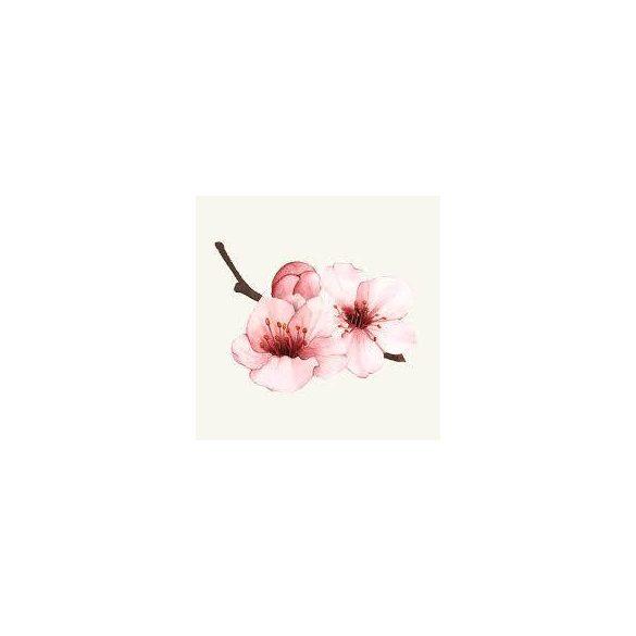 Váza - cseresznyevirág